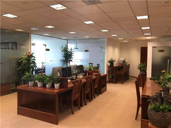 金茂大厦出租211平高区带精装修家具